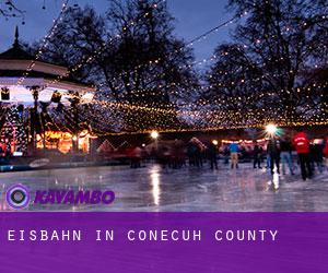 Eisbahn in Conecuh County